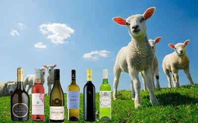 Proefpakket Lente wijnen 6 flessen