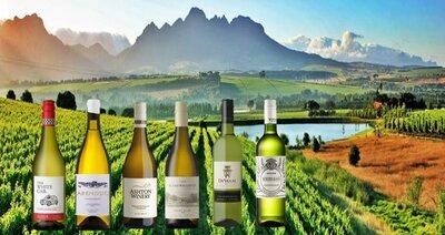 Proefpakket witte wijnen Zuid Afrika 6 flessen